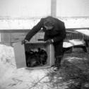 Vogelwacht-winterhulp
