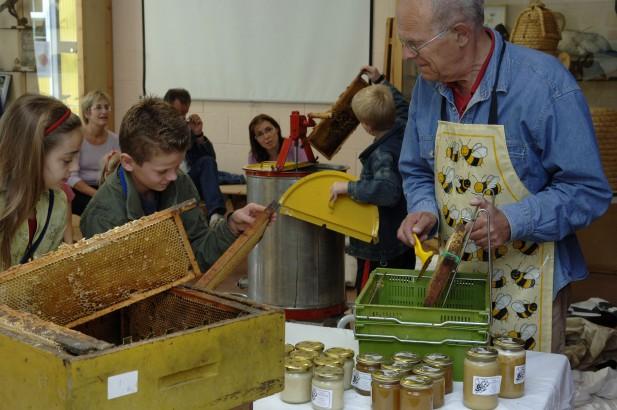 Honingslingeren