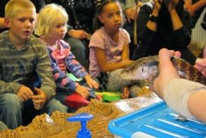 reptielendag-darwinpark-foto-tom-kisjes