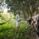 Heemtuin Zaandam-plant bij de dokter (3) foto Wim Giebel