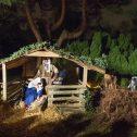 kerst in de heemtuin foto Wim Giebel